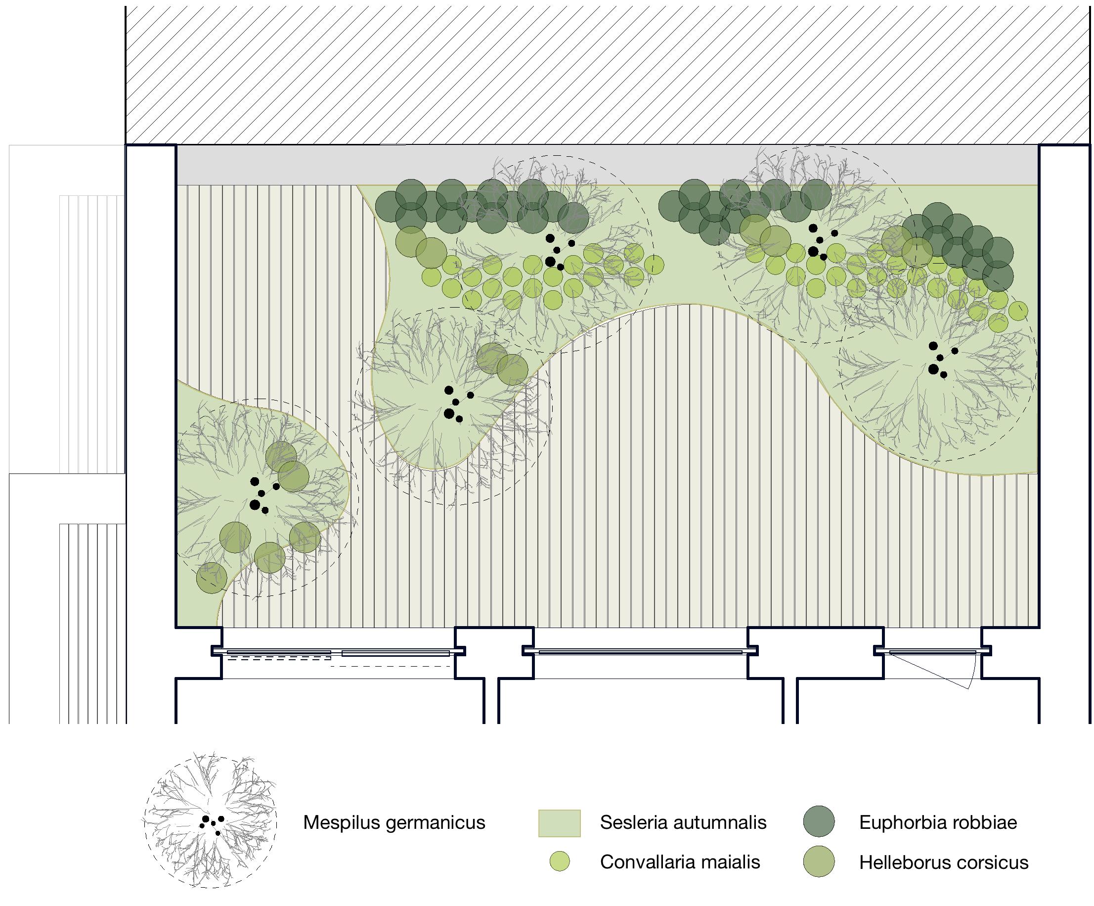 ampankepark_dach_plan